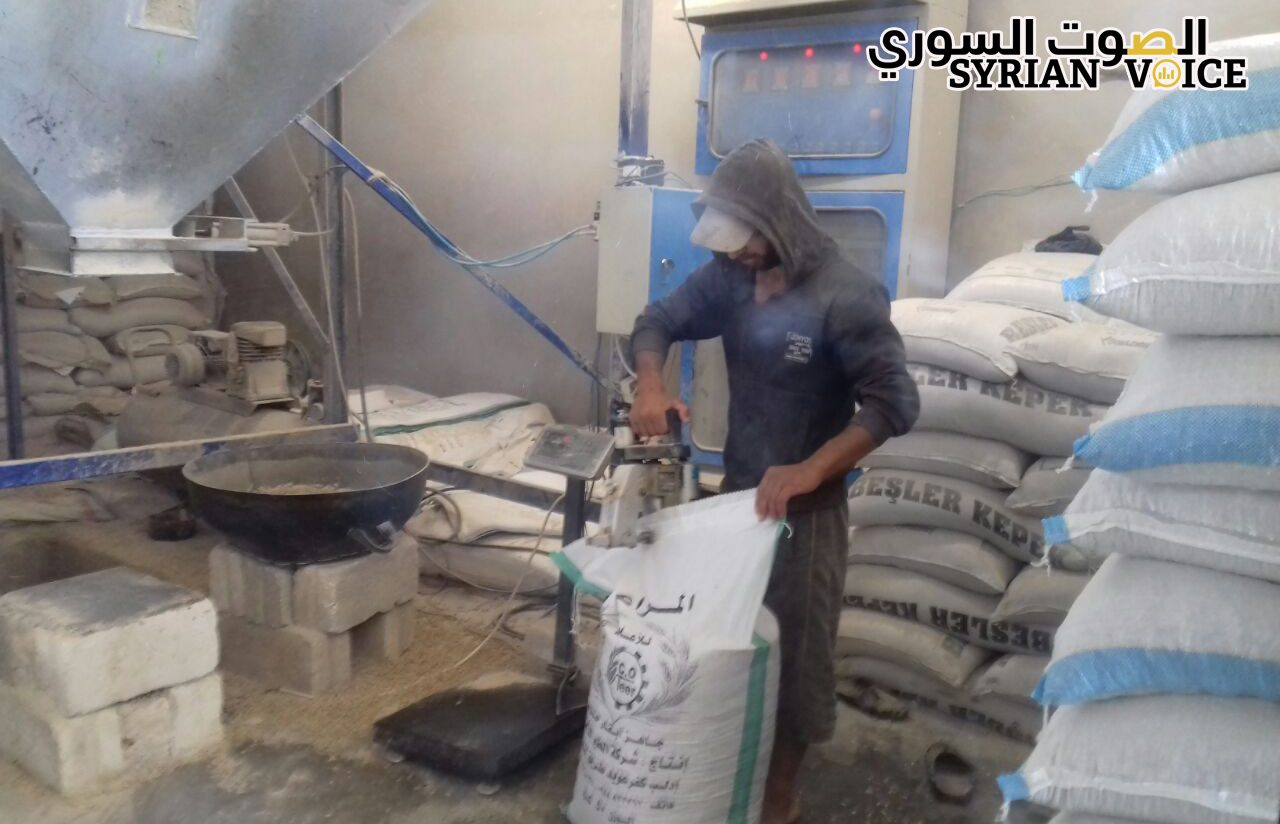 """إدلب: ارتفاع تكاليف """"تربية الأبقار"""" وانخفاض مردودها دفع المربين إلى البحث عن مهن أخرى"""
